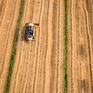 yellow cultivator on brown field