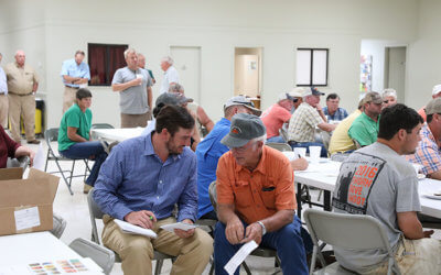 Sweet potato growers meet about potentially serious new pest