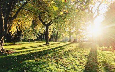USDA/NRCS accepting Environmental Quality Incentives Program applications