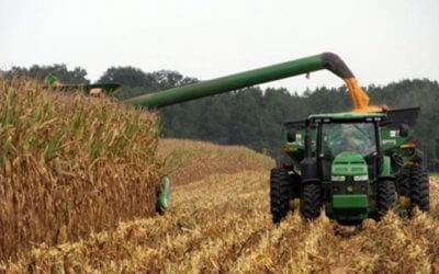 Steps for Purchasing an MDOT Harvest Permit